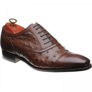 Puccini two-tone shoe