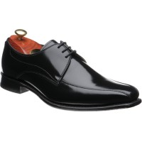 Spence Derby shoe