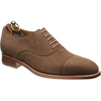 Herring Ilmington Oxfords in Tabacco Suede