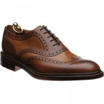 Funnelweb two-tone brogue