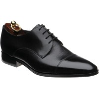 Doyle Derby shoe