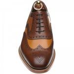 Tarantula two-tone shoe
